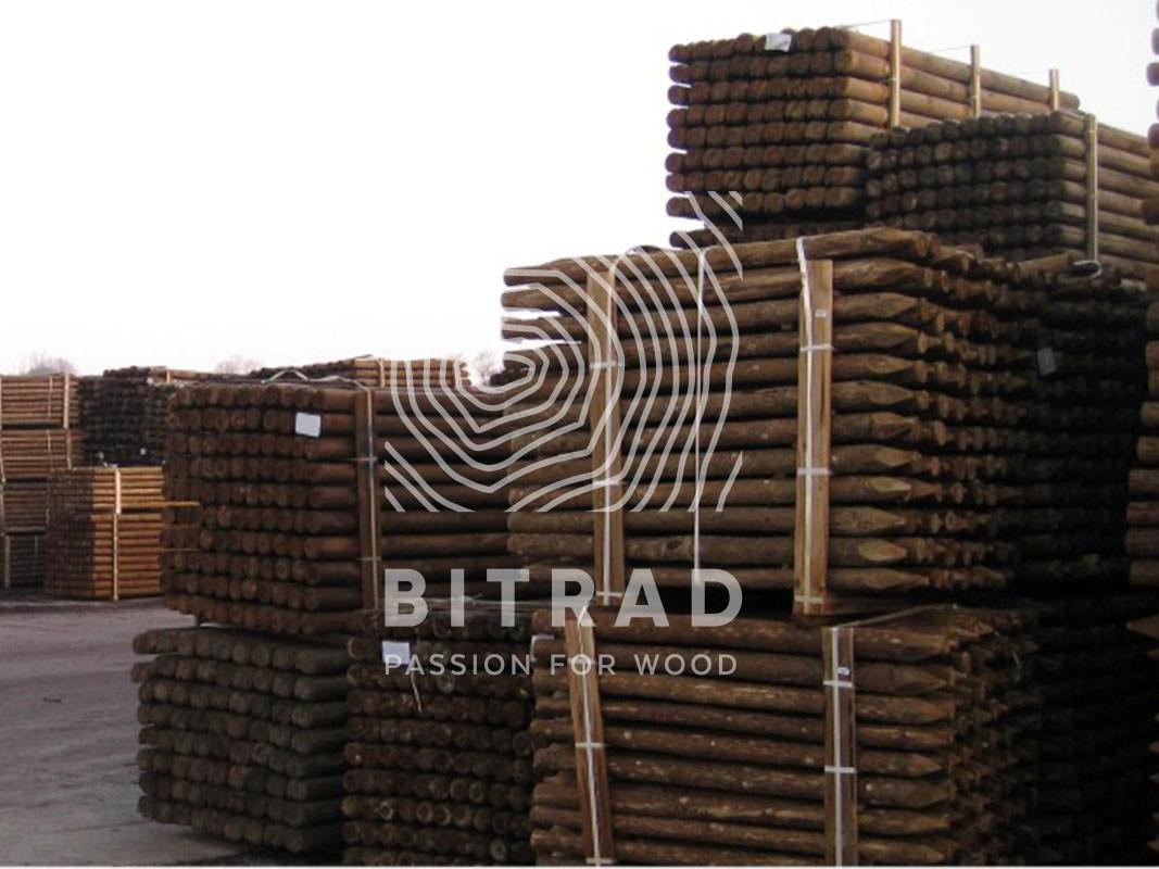 Legno impregnato in autoclave - Bitrad